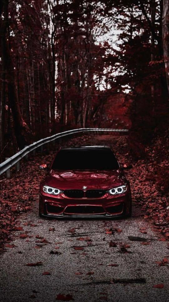 Hangi araba için tüm servetinizi harcamak isterdiniz?