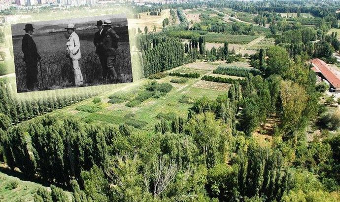 Atatürk Orman Çiftliginde yol yapımı tekrar gündemde! Yol yapılması şart mı?