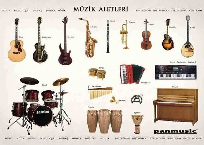 Bir müzik enstrümanı çalacak olsanız, hangisini seçerdiniz?