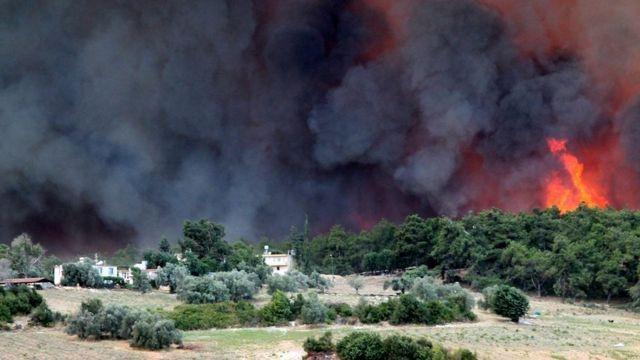 Orman yangınları terör propagandası olabilir mi?
