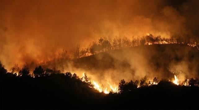 Birçok noktada ormanlarımız yanıyor! Sizce bu yangınlar kasıtlı mı çıkıyor?