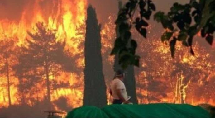 Ormanlar yanarken kayyum Türk Hava Kurumu Başkanı Cenap Aşçı düğüne gitmiş. Bu duruma yorumunuz nedir?