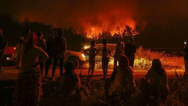Öğretmenler can çekişiyor ormanlar yanıyor bu ülke nereye gidiyor?