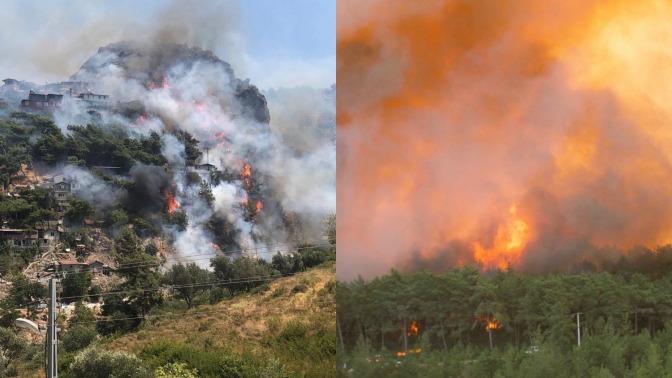 Bodrum ve Silifkede yangın başladı. Kim neden ülkeyi bir anda kundaklamaya başladı?