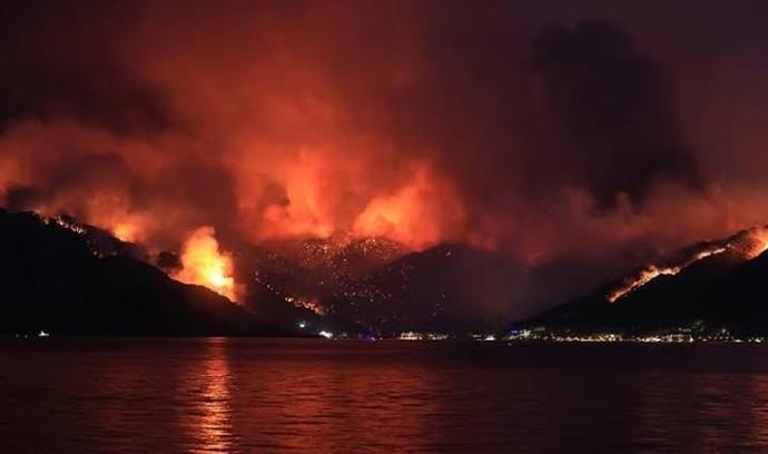 Sizce bu yangınlar neden oldu?