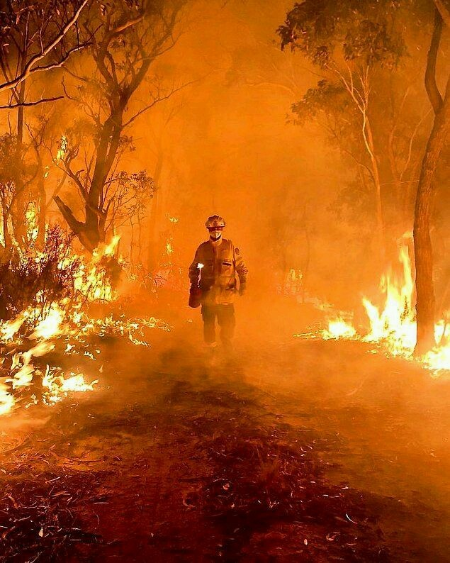 Orman yangınları söndürülmesinde sorumluluk il belediyelerinde mi yoksa Tarım ve Orman Bakanlığında mı?