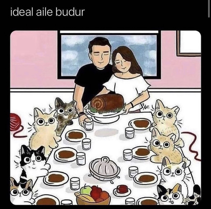 Evlendikten sonra evinize evcil hayvan alacak mısınız?