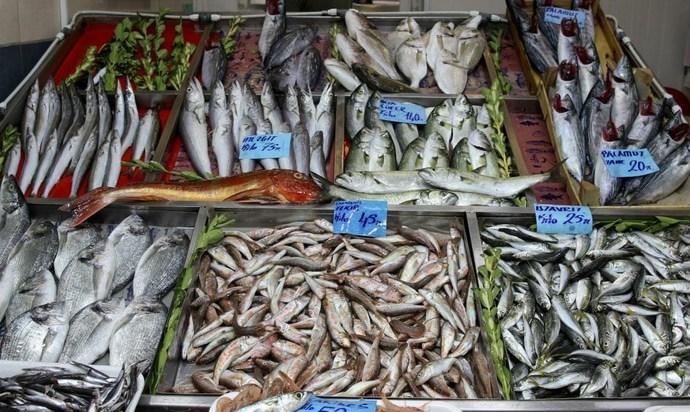 3 tarafı denizler ile çevrili ülkemizdeki, balık fiyatları hakkında ne düşünüyorsunuz?