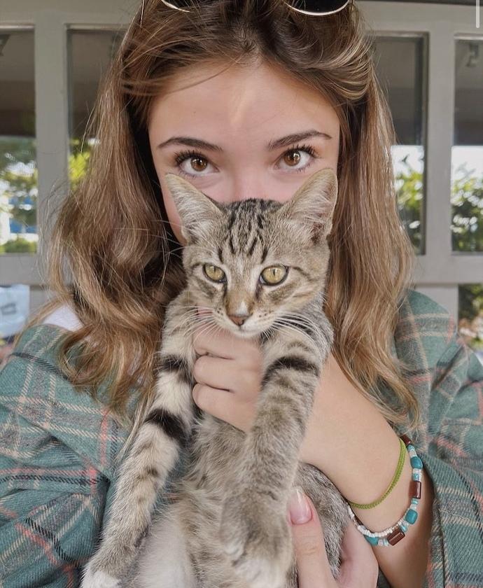 Kedileri sever misinizz?