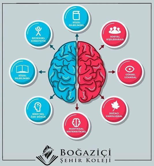 Çoklu zeka kuramına göre siz hangi tür zekaya sahipsiniz?