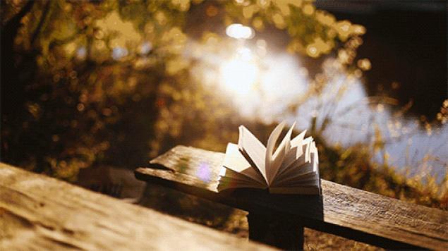 Hayatınızın geri kalanını içinde yaşamak istediğiniz bir kitap var mı?