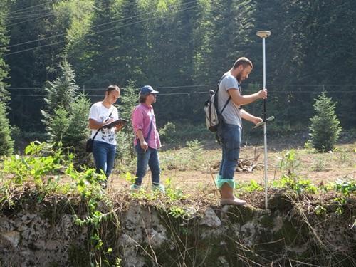 Orman mühendisliği ile orman endüstrisi mühendisliği'nin farkı nedir?
