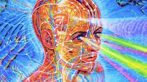 Bir duyguyu tüm insanlığa hissettirme gücün olsaydı hangi duyguyu seçerdin?